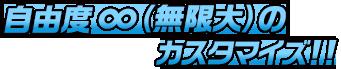 自由度∞(無限大)のカスタマイズ!!